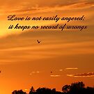 Love is not easily angered by hummingbirds