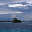 Paradise at Vona Vona Lagoon by Reef Ecoimages