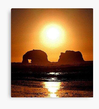 BLAZING SUN Canvas Print