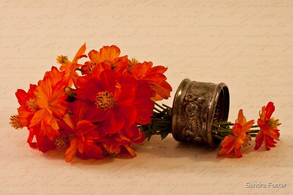 Orange Zinnias by Sandra Foster