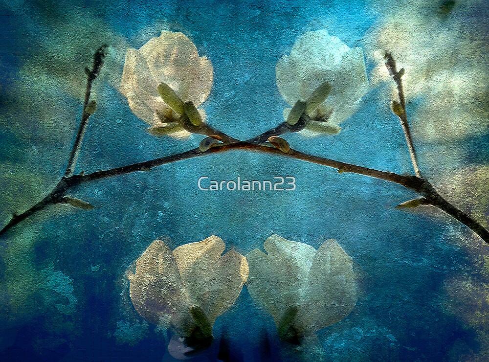 Oriental Blossoms by Carolann23