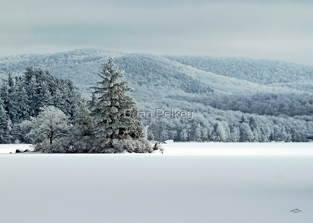 Home For The Holidays by Brian Pelkey