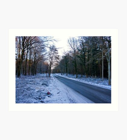 Road Through The Woods Art Print