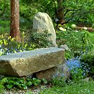 At Peace in the Garden by Monica M. Scanlan