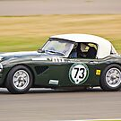 1958 Austin Healey 3000 MK 1 by Willie Jackson
