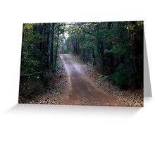Quot Road Not Taken Dirt Road In Cass County Texas Quot By