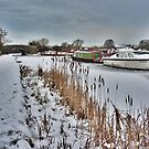 Lancaster Canal at Garstang  by Lilian Marshall