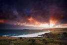 Storm over Petrel Cove by KathyT