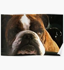Dibble the Dog Poster