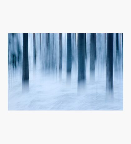 Frost and fog Photographic Print