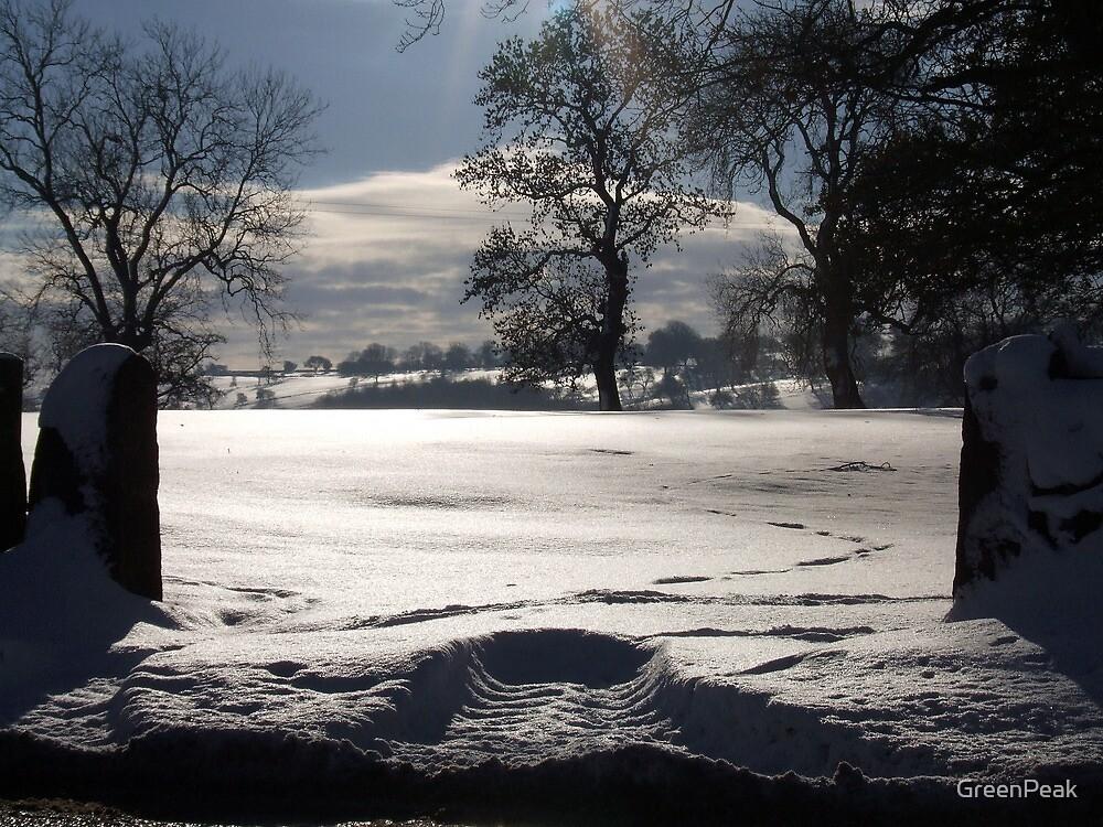 Snowed In by Paul  Green