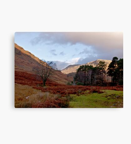 The Beauty of Wasdale Canvas Print