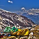 En Route to Rohtang by Neeraj Nema
