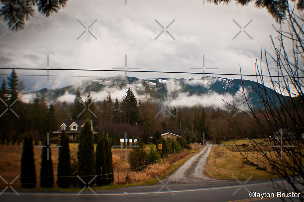 Washington Winter by Clayton Bruster