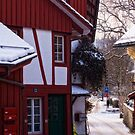 Red House on Bachtelstrasse by Dania Reichmuth