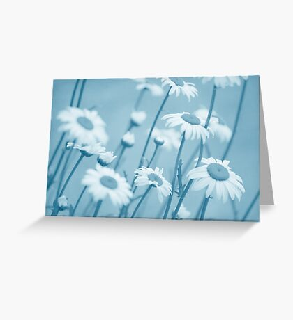Daisies in Blue #2 Greeting Card