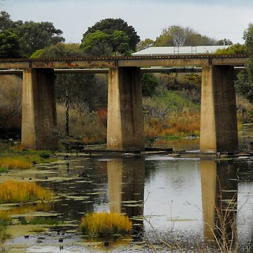 Rail Bridge in Allansford, Victoria by bluegoddess