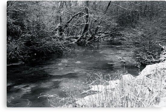 2010 river martin blarney by Edward  manley