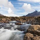 Mountain River by Will Hore-Lacy