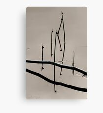 Mirage Canvas Print