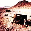 Carnage in the Desert by Benjamin Sloma