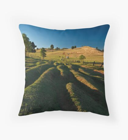 The Road Well Travelled Throw Pillow