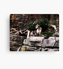Walled Up Canvas Print