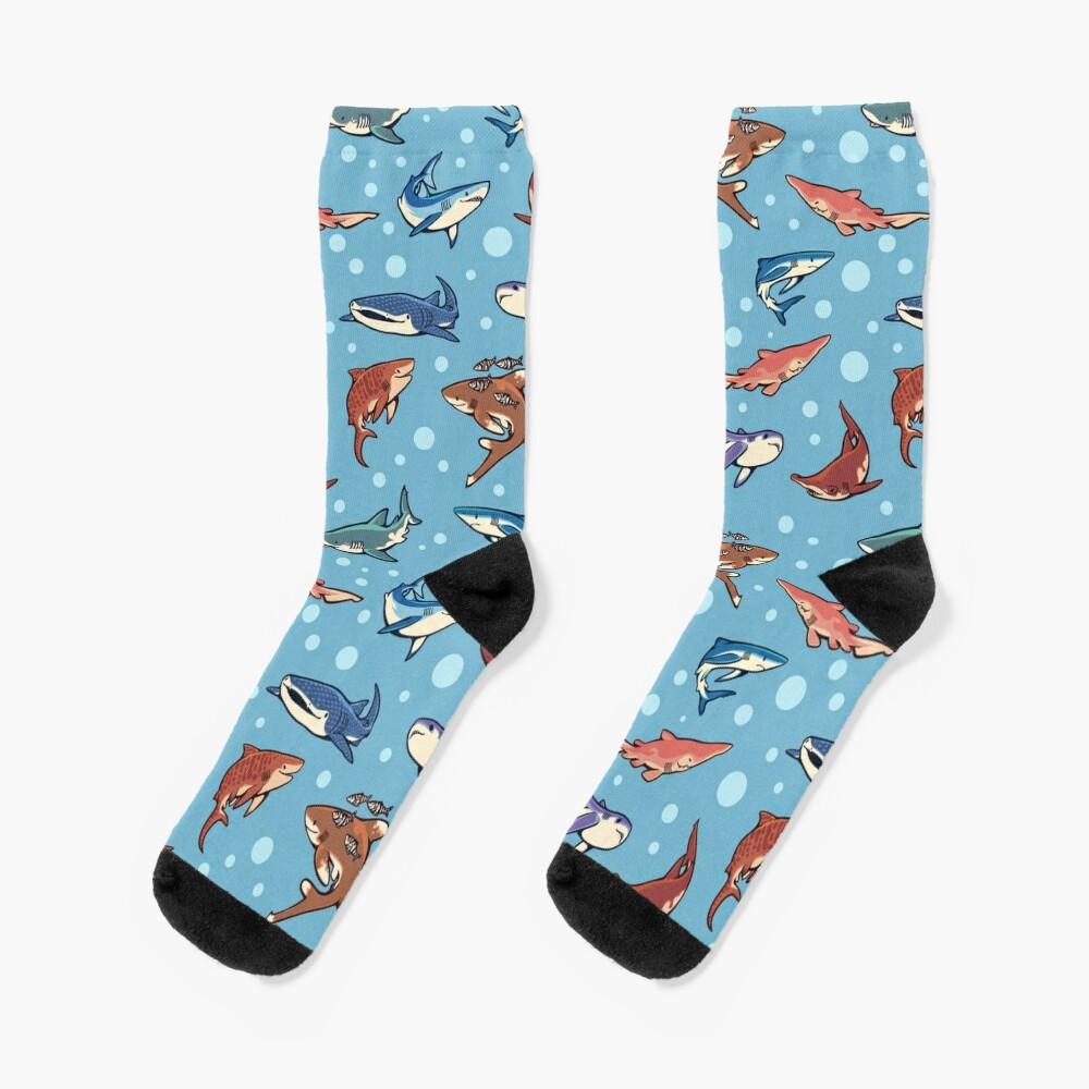 Sharks in the light blue Socks