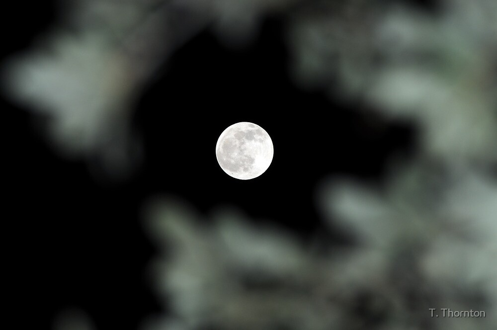 Lunar Eclipse Begins- Lycan Silhouette by T. Thornton