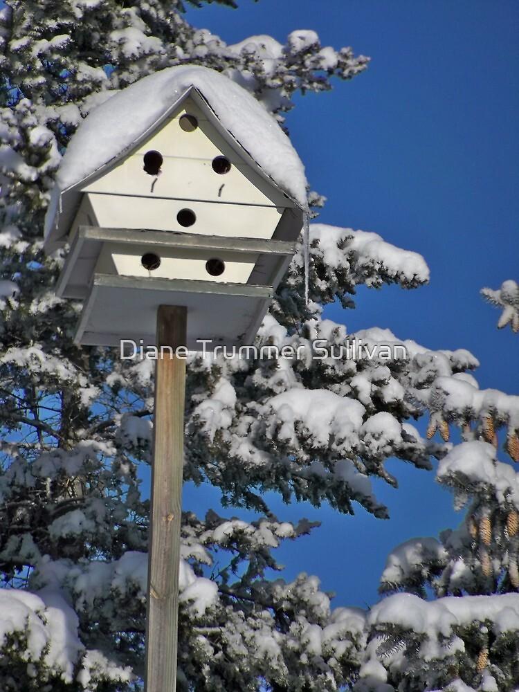 Winters House by Diane Trummer Sullivan