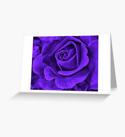 Midnight Velvet Greeting Card