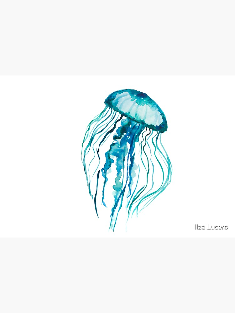 Watercolor Jellyfish by ilzesgimene
