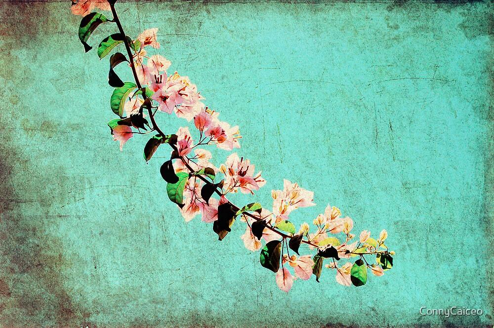 Sólo una rama en el cielo by Constanza Barnier