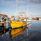 The Yellow Boat by Linda Lees