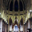 Sait Patrick's Cathedral by Darwin Deleon