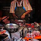 You sir, are a fishmonger! by Vikram Franklin