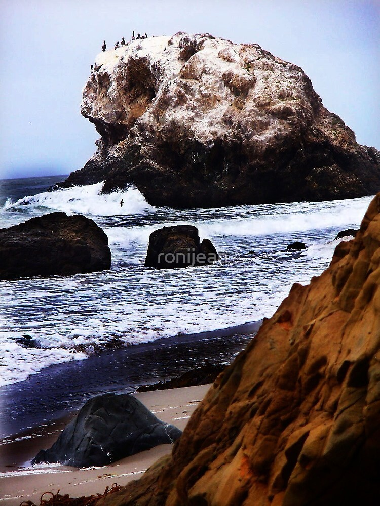 Cambria Beach by ronijean
