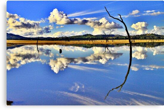 Mirror, Mirror On The Weir. by Petehamilton