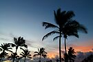 hawaii sunrise by Flux Photography