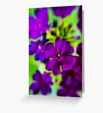 Psychedelic Purple  Greeting Card