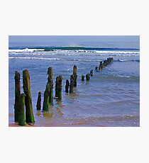 Old Groynes at Sandsend. Photographic Print