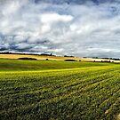 Bockhill Farm by John Gaffen