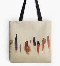 Feather Study no. 1 Tote Bag