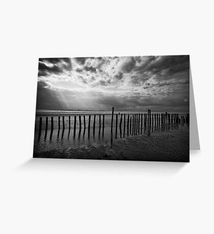Beach Spectacle Greeting Card