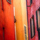 Windows - Nice by Frank Bibbins