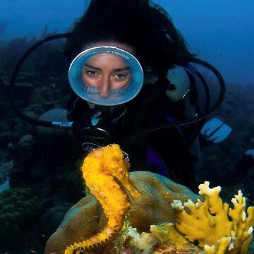 Seahorse by underwaterart