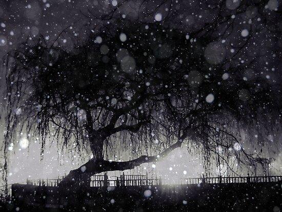 Lost by Josephine Pugh