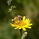 Bee Mine by Maree Toogood