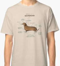 88d5d08a Sexy Sausage Dog With Croc Sticker. Anatomy of a Dachshund Classic T-Shirt