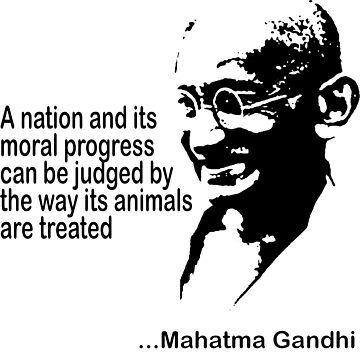 Gandhi Animal Rights T-Shirt by T-ShirtsGifts